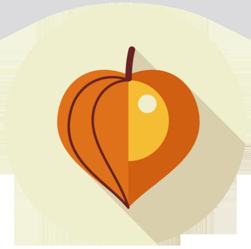 Golden Berry (physalis)